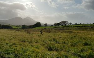Knockfin, Westport, Mayo